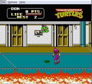 NES Turtles.